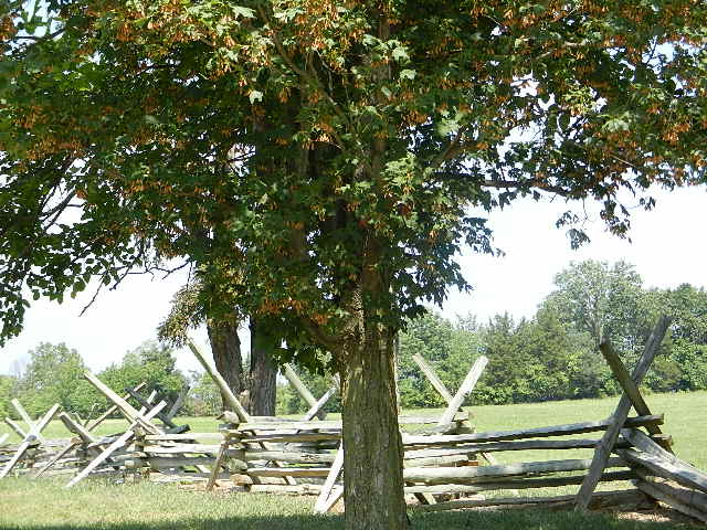 New Market Battlefield State Historical Park New Market V American Studies At The
