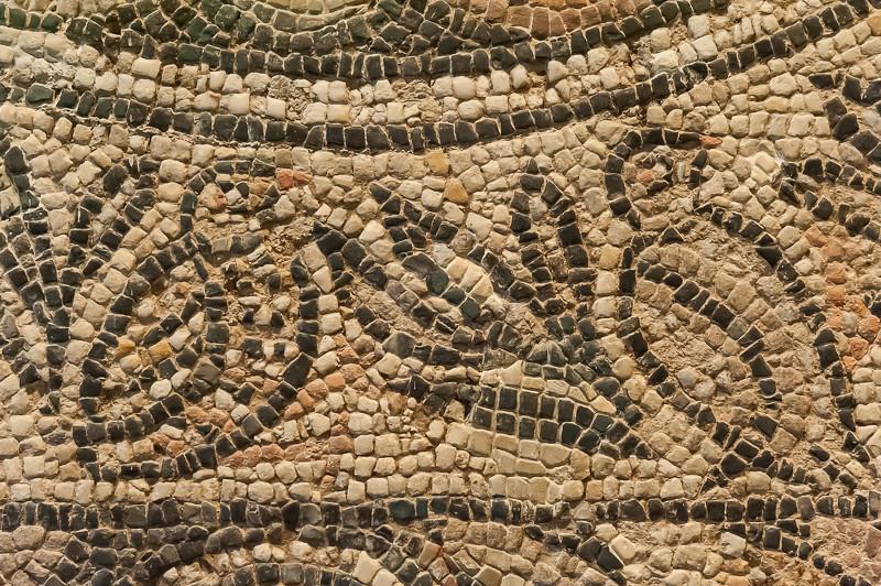 Mosaico romano museo de navarra pamplona pamplona for Mosaico romano