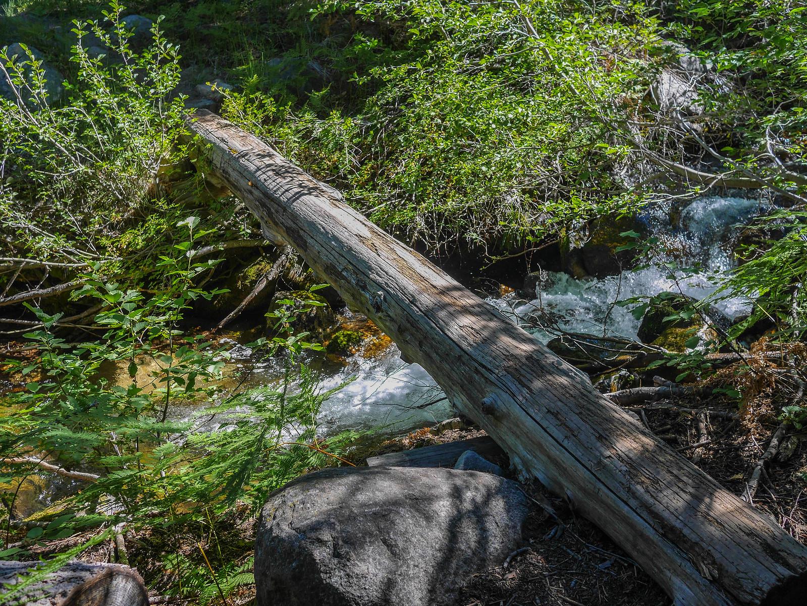 Log across Fish Creek