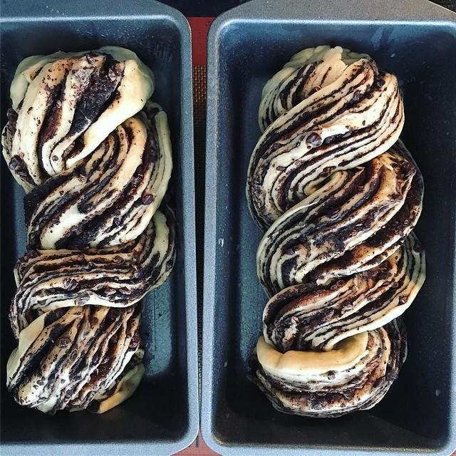Chocolate babka, into pans for a final rise. #kingarthurflour #bakealong #chocolatebabka