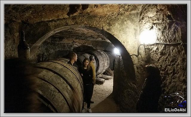 Bodegas medievales don Angel y don Carlos en Aranda de Duero  (3)