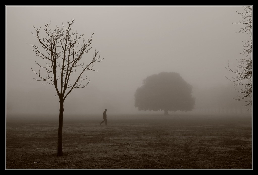 Mist In The Park 21 365