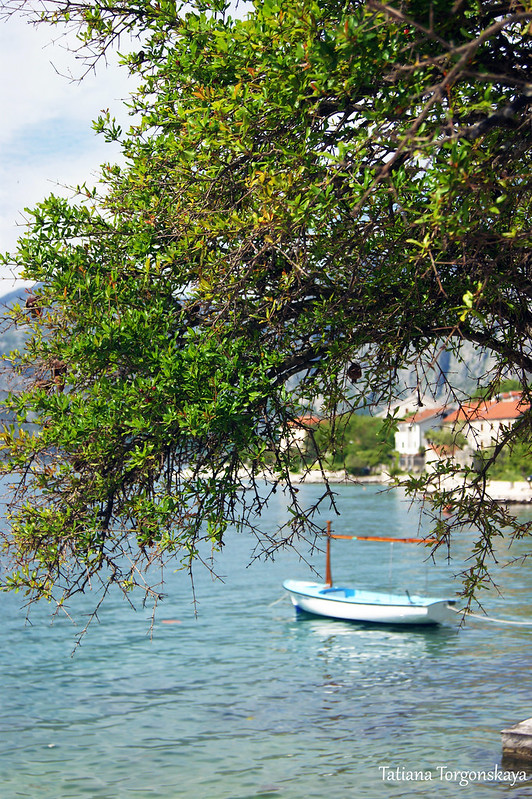 Пейзаж с лодкой и гранатовым деревом