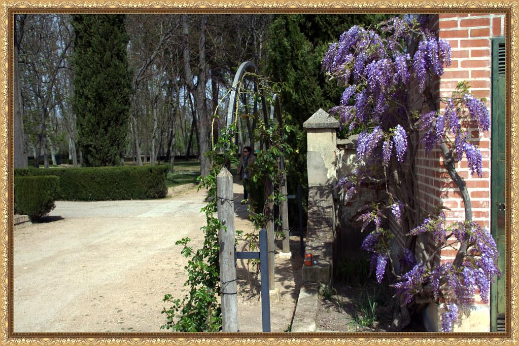 Primavera en los Jardines del Príncipe