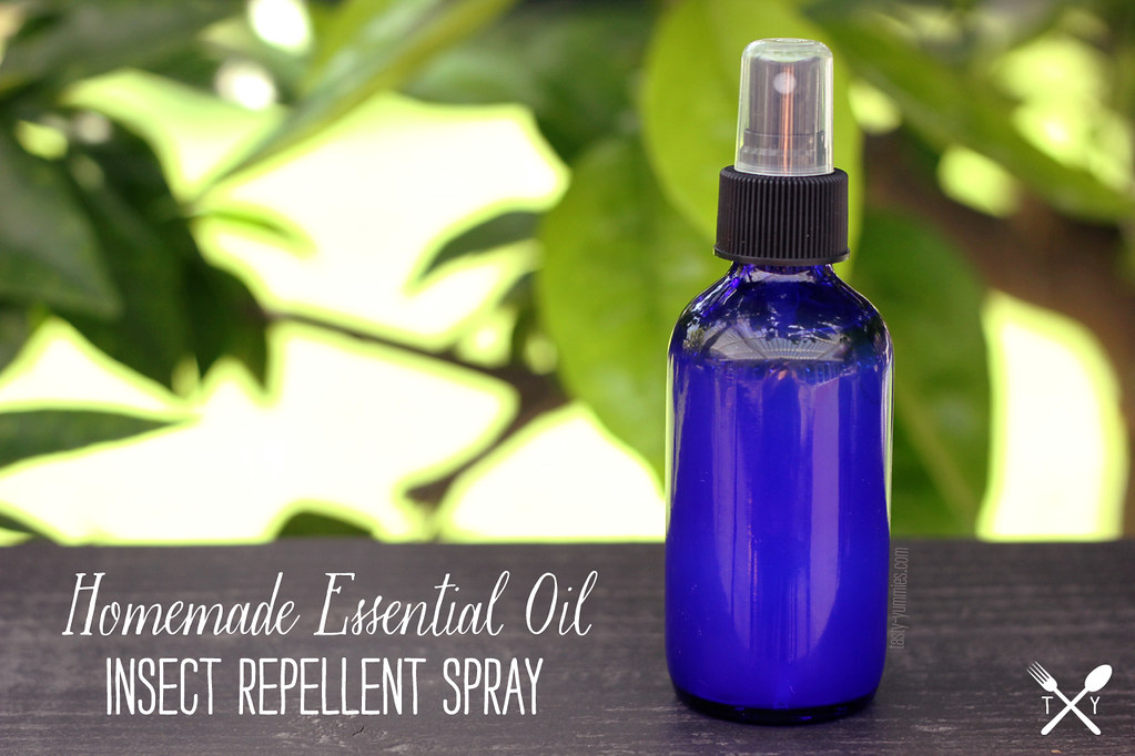 diy insect spray essential insect repellent spray tasty