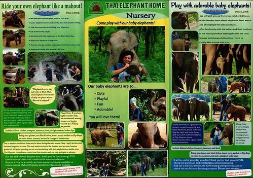 Thai Elephant Home Chiang Mai Thailand Brochure 3