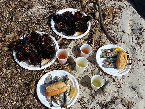 déjeuner d'oursins dans le sable