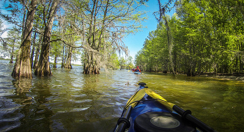 Paddle to Church Island with the Tri-County Blueways Paddlers-076