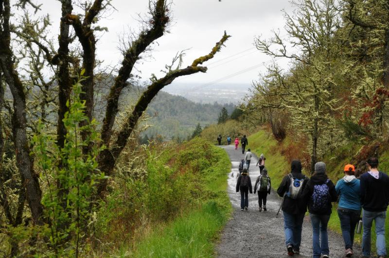 Hiking at Pisgah @ Mt. Hope Chronicles
