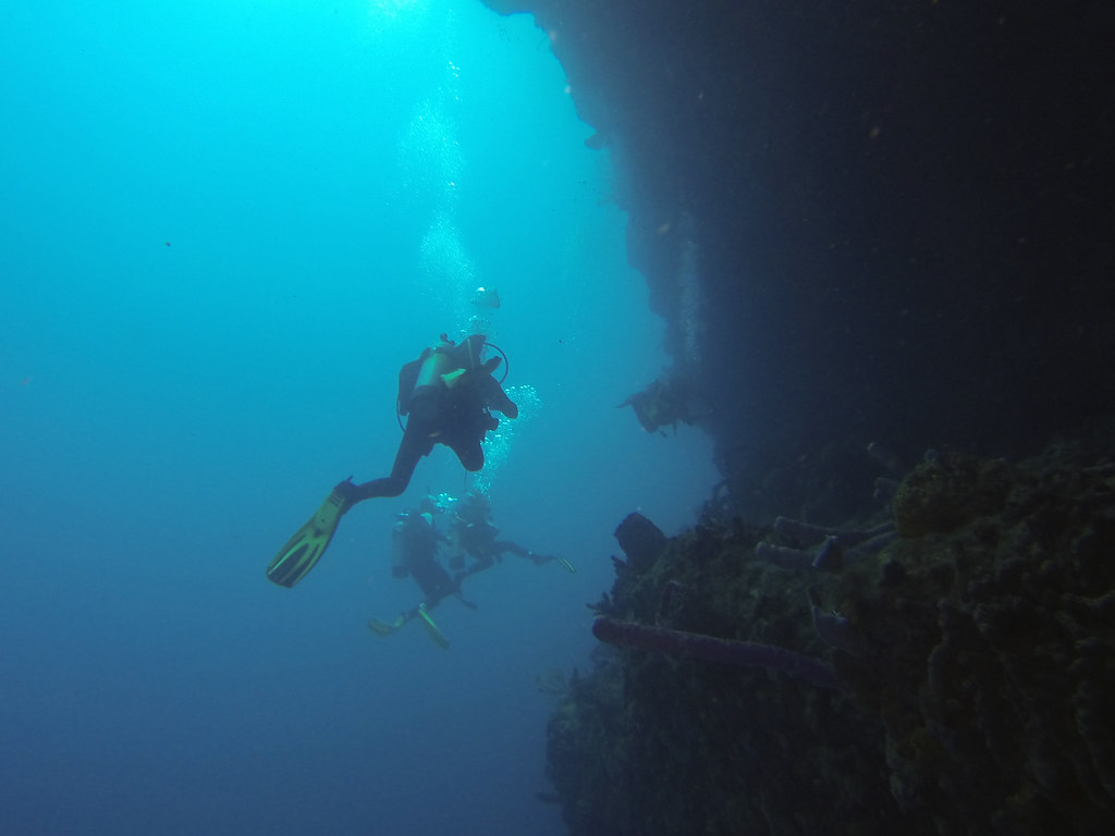 ... Diving at Tent Wall in the Caribbean Sea in Saba National Marine Park off of Saba & Diving at Tent Wall in the Caribbean Sea in Saba National u2026 | Flickr