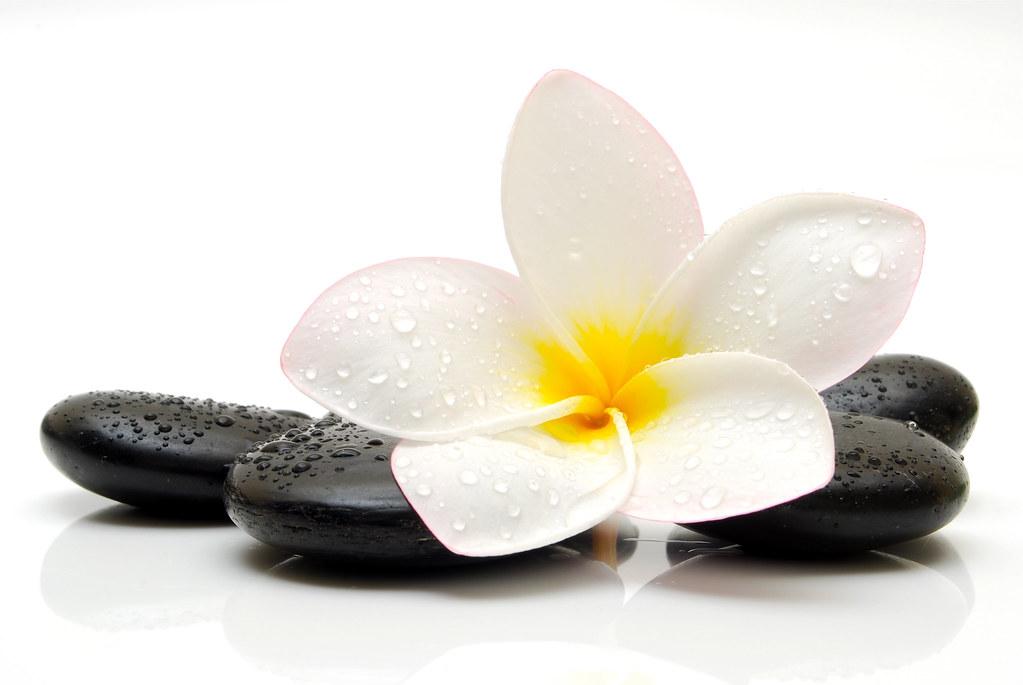 gratis  mobil thai massage i malmö