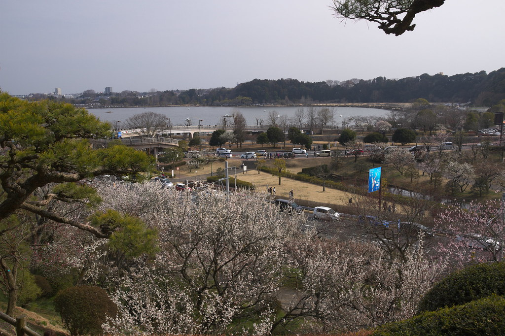 Ume and Sembako Lake