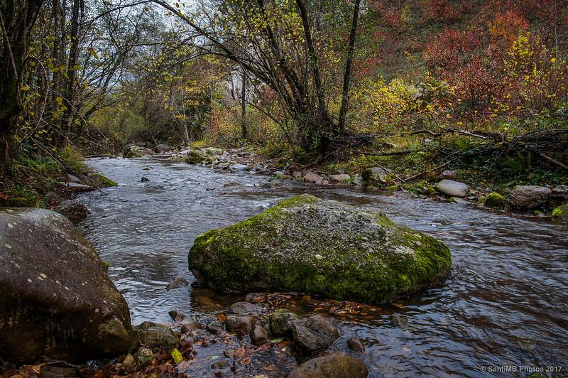La corriente del Iñarbegi hacia la Cascada de Xorroxin