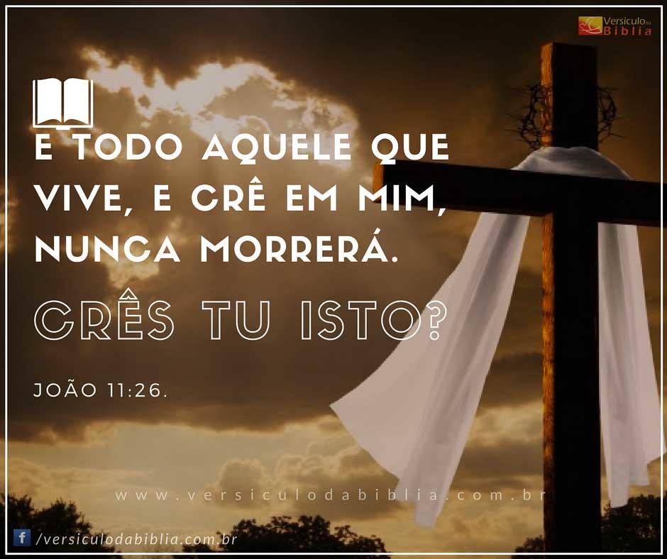 Muitas vezes Versículo Bíblico Sobre Vida Eterna - João 11:26 | Versícu… | Flickr WK32