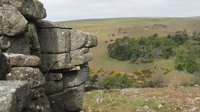 Black Tor (Brent Down) from Shipley Tor