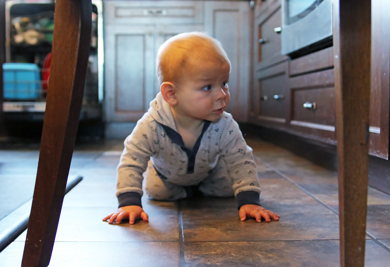 Crawling around the kitchen