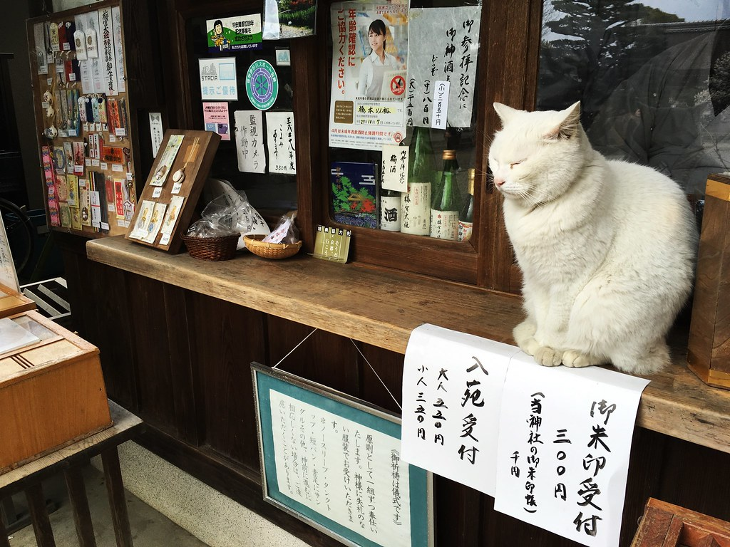 梅宮大社:Umenomiya Taisha (20170309)