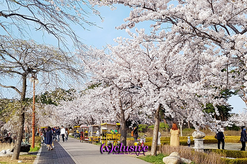 20170407_165040-2 | by sgXCLUSIVE
