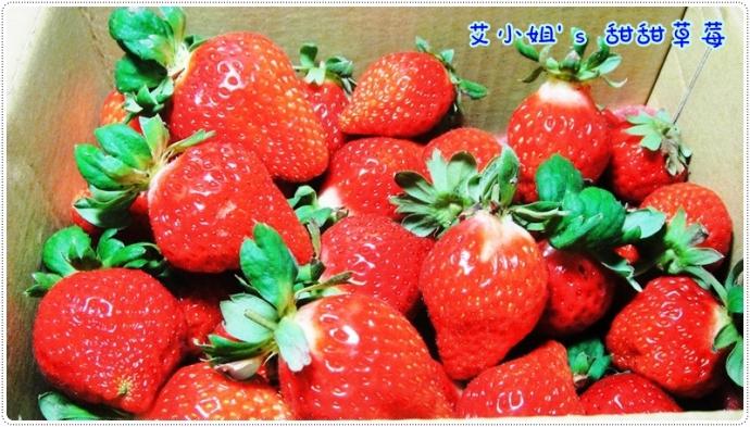 甜甜草莓園