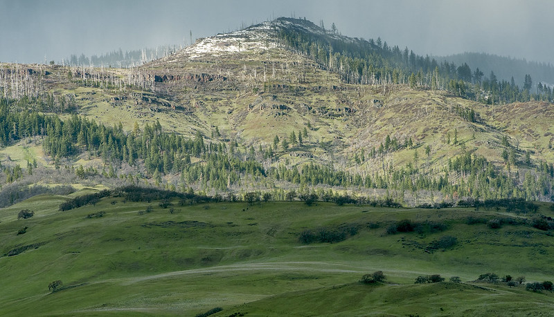 Grizzly Peak in spring with snow