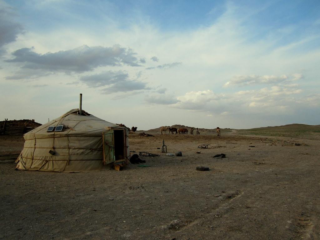 Mongolia kokemuksia | jurtta