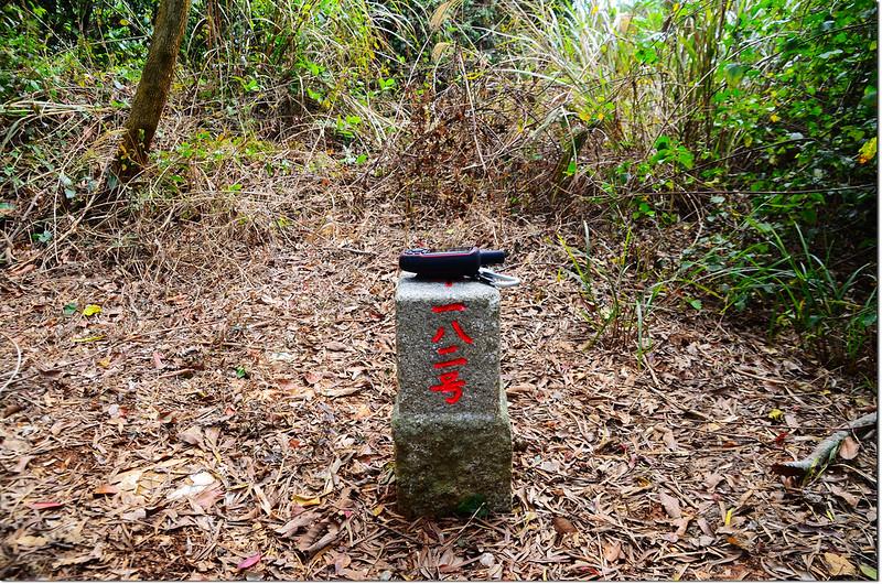 大棚山三等三角點(# 182 Elev. 265 m) 1