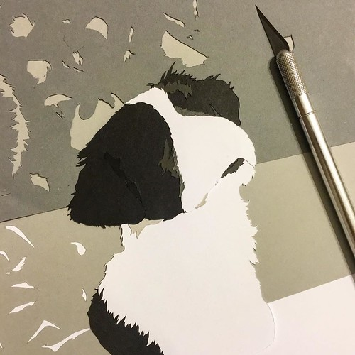 Custom Paper Pet Portrait - in Progress