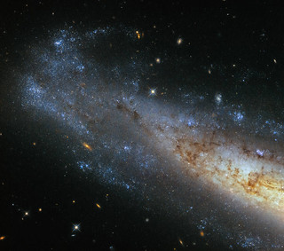 Seeing things sideways | This image from Hubble's Wide ...