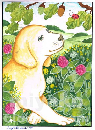 Dog with cloverand acorns