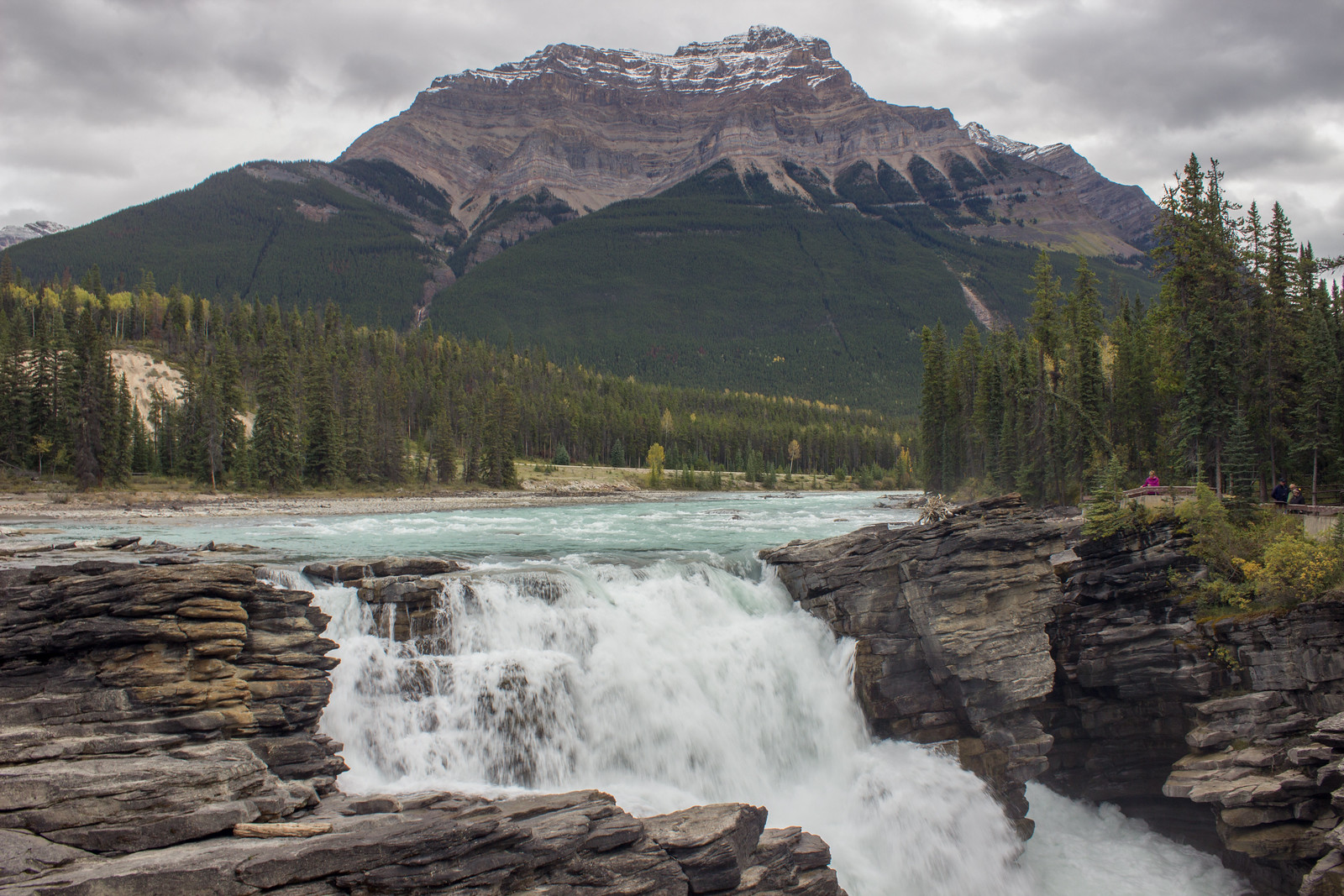 Athabasca Falls, just outside Jasper on the Icefields Parkway