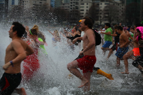 Polar Bear Swim 2014 | by GoToVan