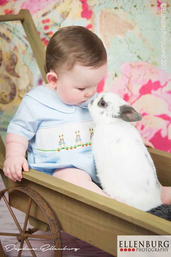 Baby Bunny Nose Kisses.