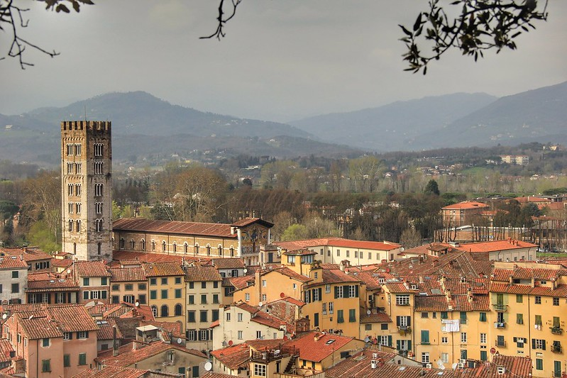 View from the top of Torre Guinigi, Lucca
