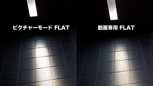 OM-D 動画ピクチャーモード-1