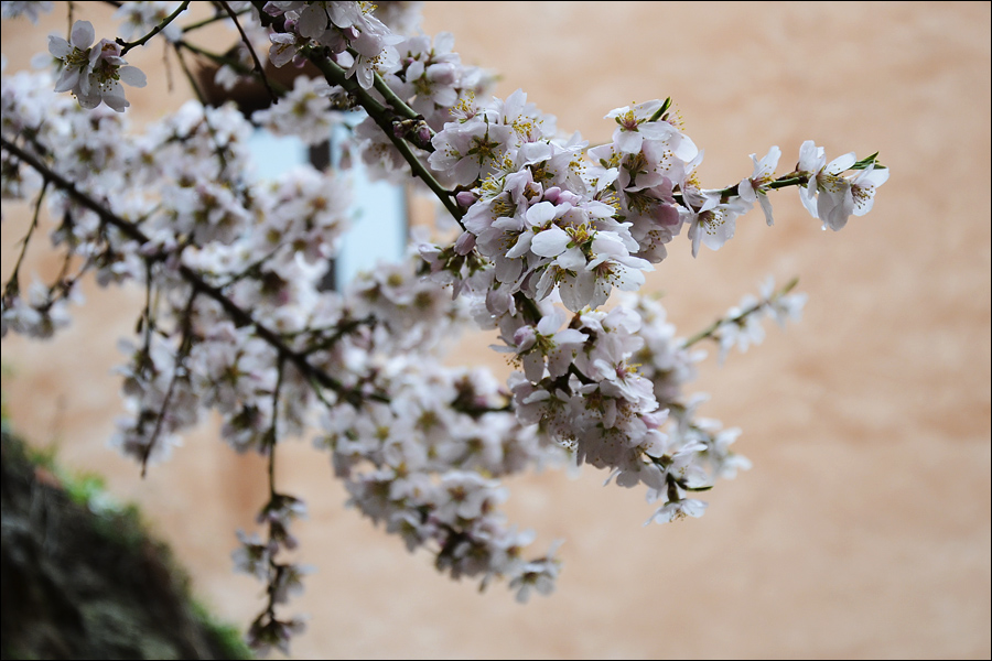 Albarracin_0045