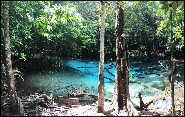 Blue Pool Near Emerald Pool, Krabi
