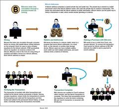 Memory Coin Solo Mining Bitcoin