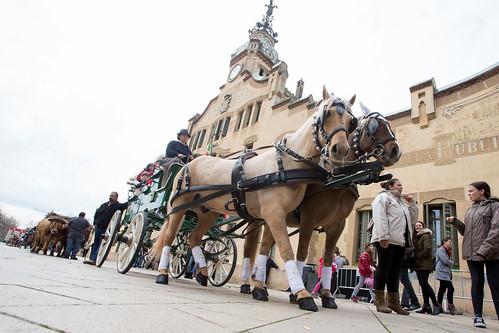 Festa de Sant Antoni Abat - Passada dels Tres Tombs