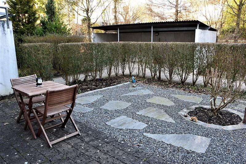 Front Garden 10.03 (3)