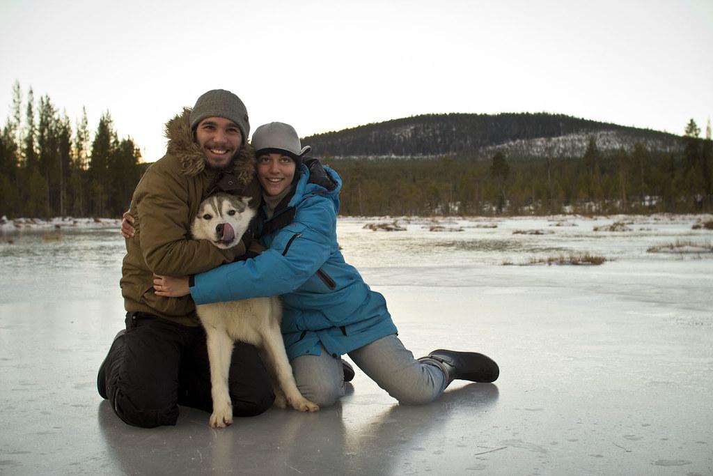 Borealis - un hiver avec les chiens