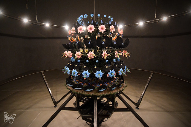 Mat Collishaw - The Centrifugal Soul