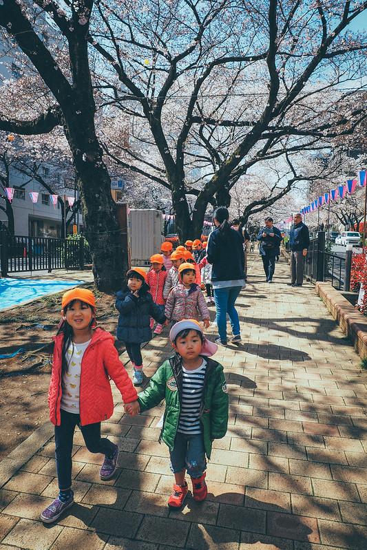 播磨中央公園 播磨坂|東京都 Tokyo