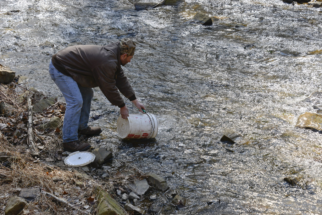 Trout stocking fort indiantown gap pa marquette for Pa fish stocking