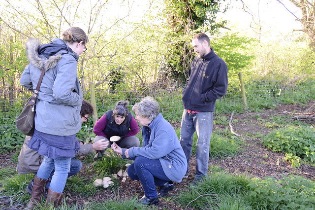 Participants at the Somerset gathering, Westfield Farm, find field mushrooms