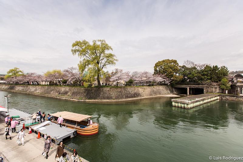 Hanami-cuesta-Keage-Kioto-72