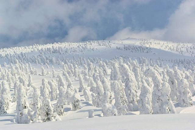 【東北】森吉山 樹氷広がる雪山登山と秋田内陸線で行く列車の旅