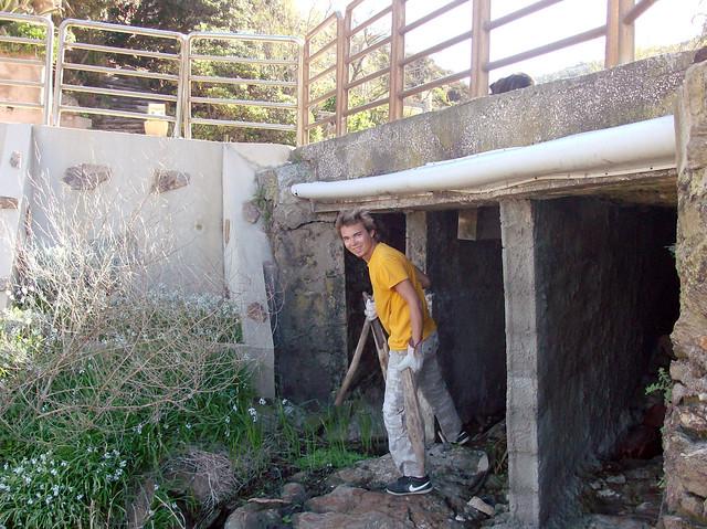Nettoyage du Levant