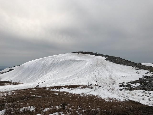 霊仙山 最高点・山頂分岐から山頂