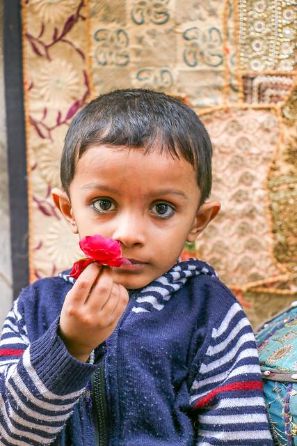 Shy boy with a flower in his hand, Jodhpur, India ジョードプル旧市街 花を持ったシャイな少年