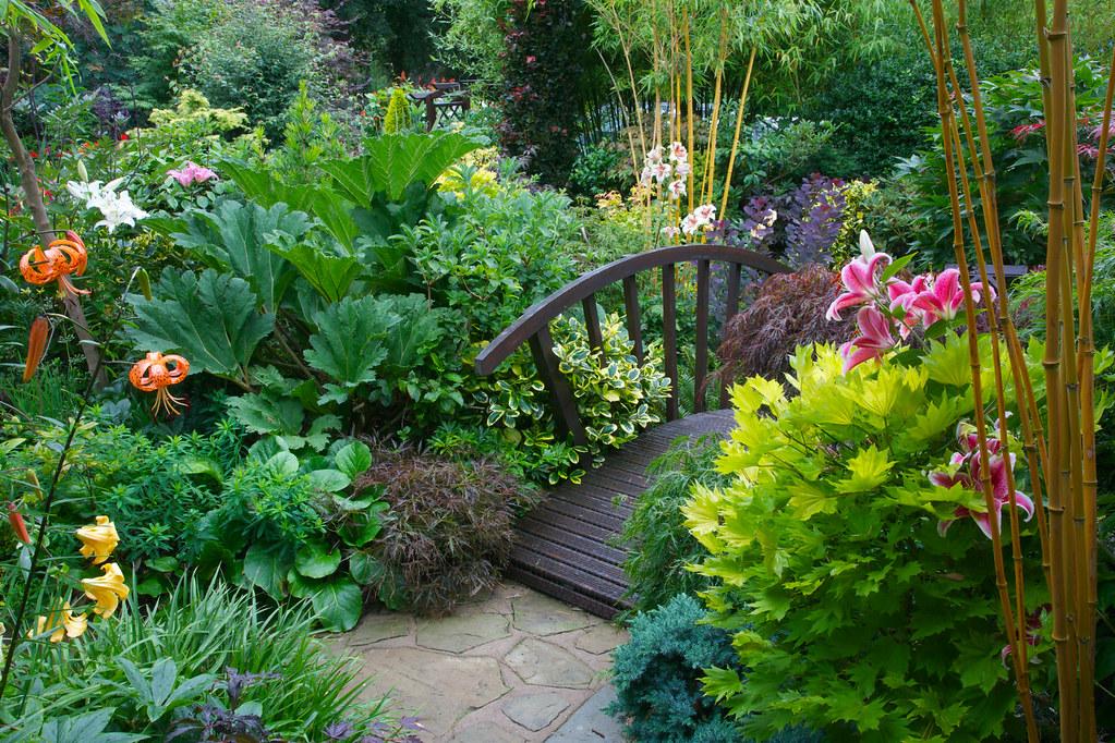 Giardini Zen Hd : Bridge amongst the summer lilies in middle garden flickr